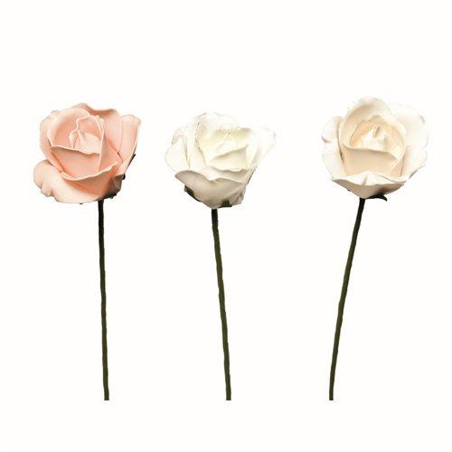 Rosa d cm 8x5 colori assortiti